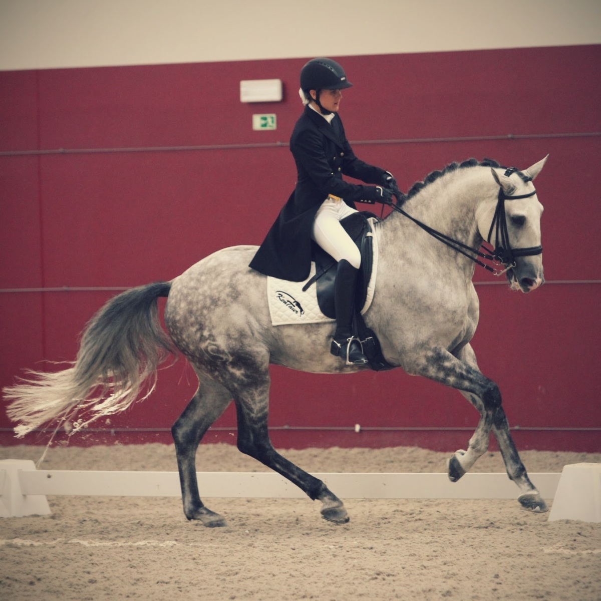 TRAINING: Loss of Confidence… In yourself, or in yourhorse…