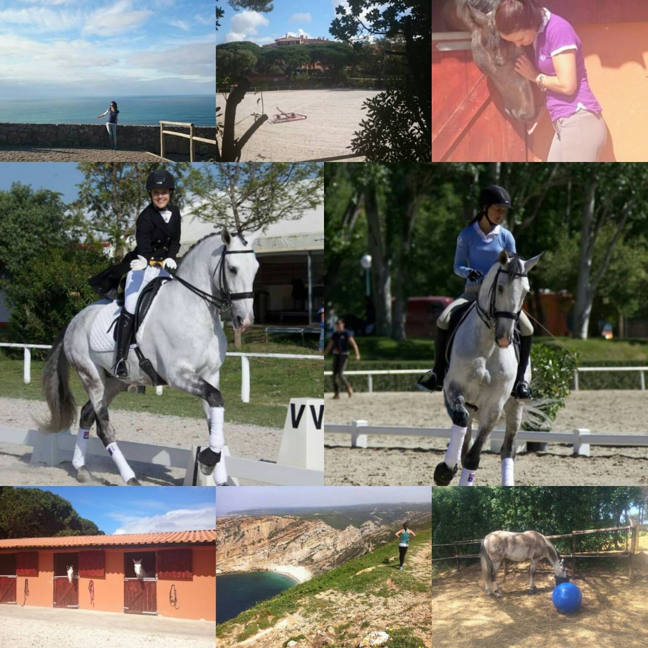 Warneyswhip Classical Riding Holidays